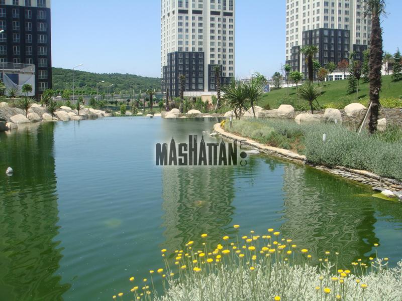 Mashattan-3