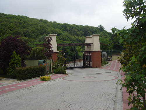 All Green Village-5