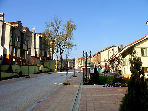 All Green Village-22