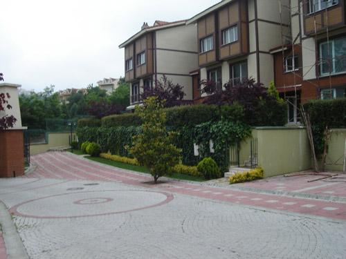 All Green Village-7