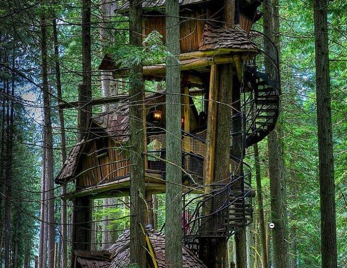 Dünyanın en güzel ağaç evleri-1
