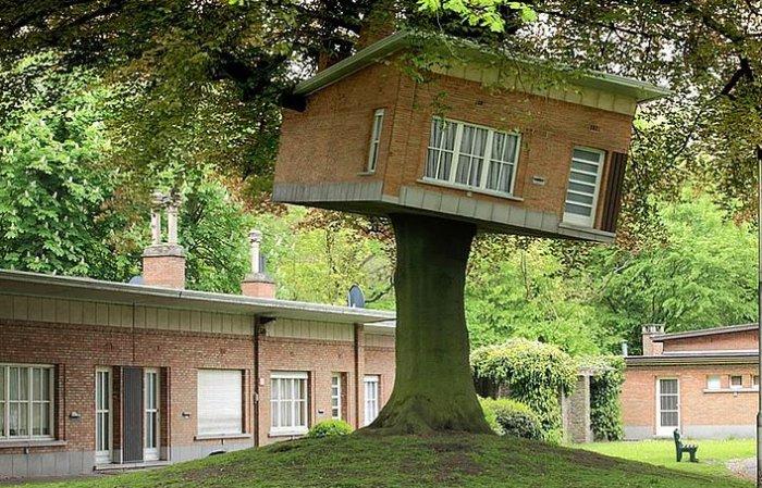 Dünyanın en güzel ağaç evleri-11
