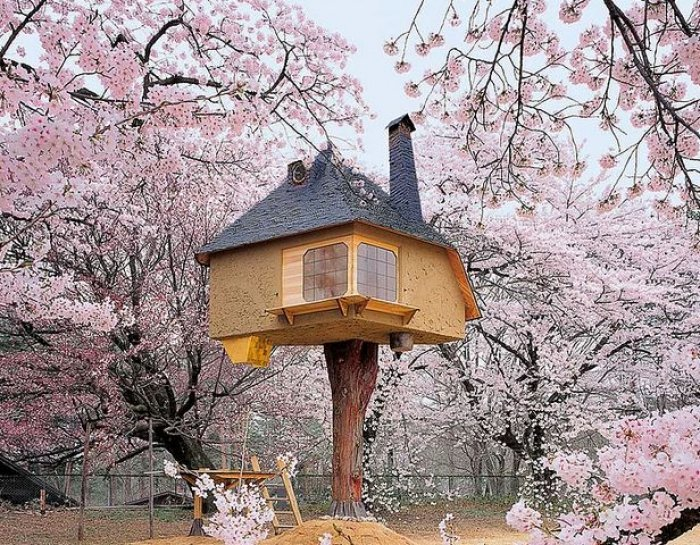 Dünyanın en güzel ağaç evleri-16