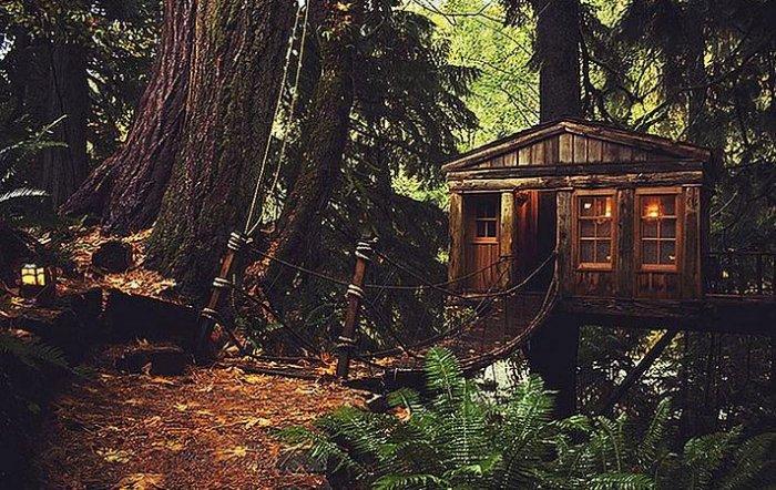 Dünyanın en güzel ağaç evleri-8