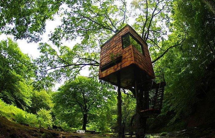 Dünyanın en güzel ağaç evleri-10