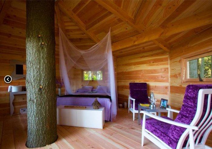 Dünyanın En Güzel Ağaç Evleri-5