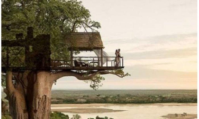 Dünyanın En Güzel Ağaç Evleri-13