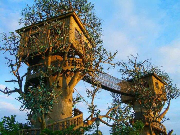 Dünyanın En Güzel Ağaç Evleri-12