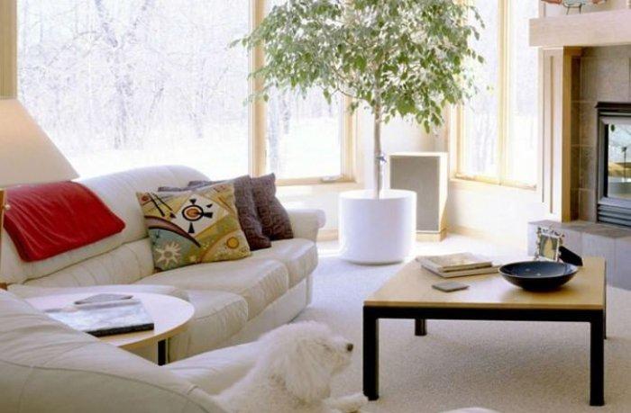 Koru Modern Villaları-7