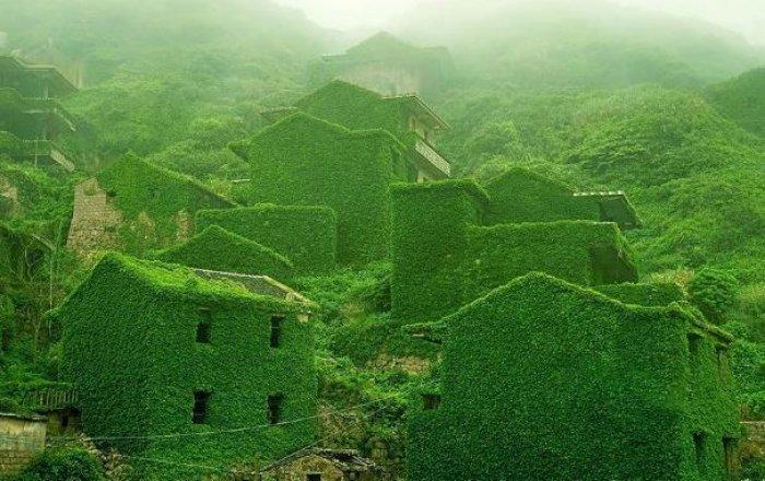 Shengsi; doğa ile yeşile boyanmış köy-1