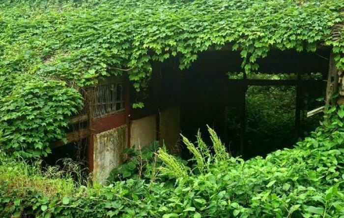 Shengsi; doğa ile yeşile boyanmış köy-5