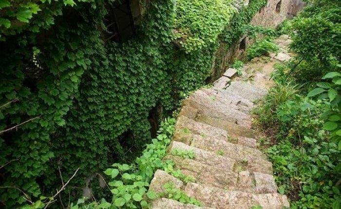 Shengsi; doğa ile yeşile boyanmış köy-7