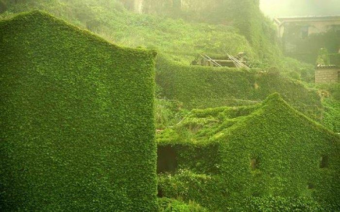 Shengsi; doğa ile yeşile boyanmış köy-8