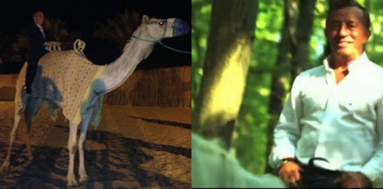Ağaoğlu Maslak'ta ata Dubai'de deveye bindi