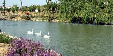 İstanbul'un en büyük botanik parkı