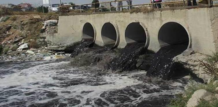Ergene nehri hayata dönüyor