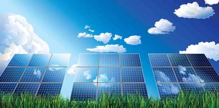 Tarım Kooperatifi'nden dev güneş yatırımı