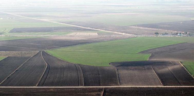 Hektar nedir? Hektar hesaplama nasıl yapılır?