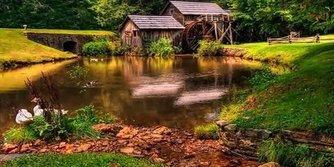 Masal gibi orman evleri