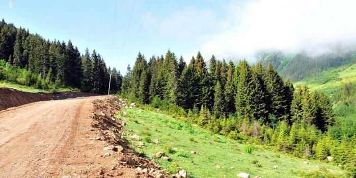 Danıştay'dan Yeşil Yol planına durdurma kararı