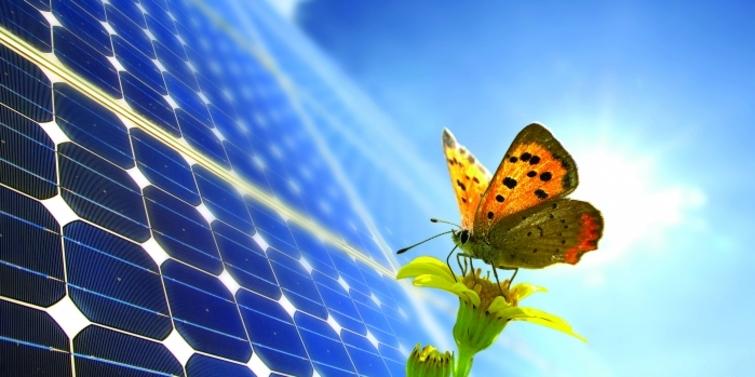 Vefa'dan enerji üretimine alternatif çözüm