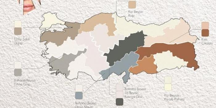 Polisan, Türkiye'nin renk haritasını çıkardı