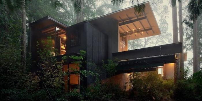 Orman evi