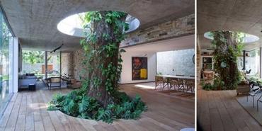 Doğaya saygısı olan mimarların elinden çıkmış yapılar