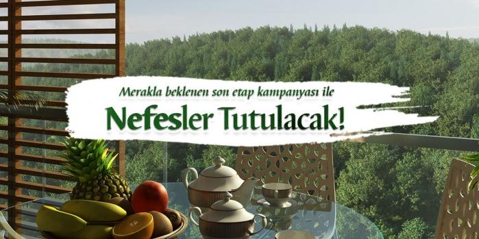 Resim İstanbul Nefes satışta!