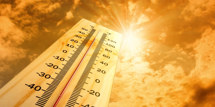 Dünya sıcaklık rekoru