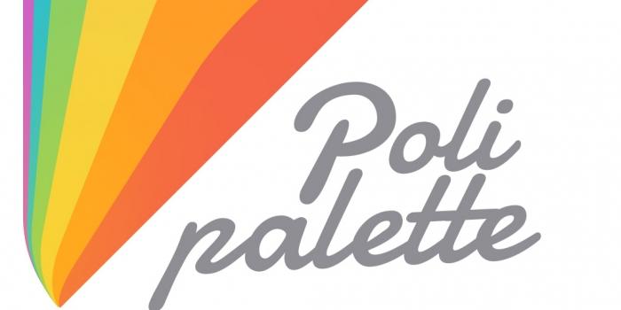 Polisan boya polipalette