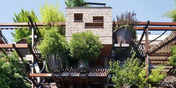 Şehrin merkezindeki ağaç apartman