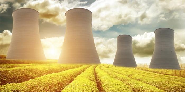 Bir garip nükleer santral politikası