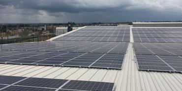 Kastamonu Entegre, güneş enerjisinden elektrik üretimine başladı