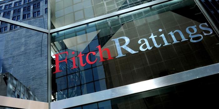Fitch kamu bankalarının notunu düşürdü