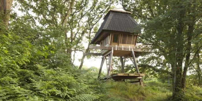 Japon mimar, yazarların hayalini süsleyen evi inşa etti