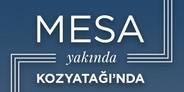 Mesa Kozyatağı ön talep topluyor