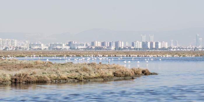İzmir Körfezi Otobanı'nda bilim mi, master planı mı?