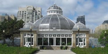 Toronto'nun yeşil dünyası: Allan Gardens Conservatory