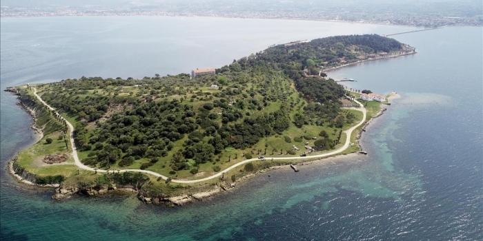 Karantina Adası Hikayesi ve Tarihi Önemi
